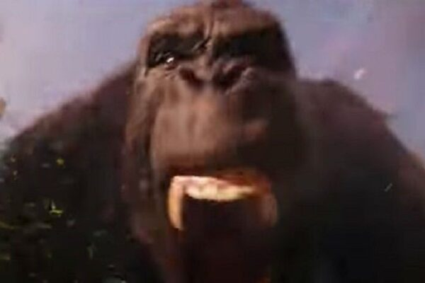 space-jam-a-new-legacy-kong